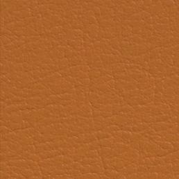 Eleather Swatch - Orange