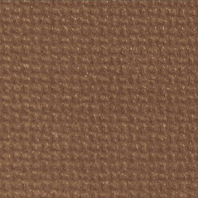 Eleather Swatch - Camel